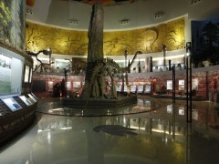 中华侏罗纪探秘旅游区旅游攻略