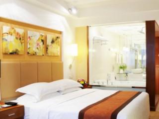 重庆小天鹅林芝宾馆